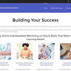 online-nursing-mentor-individualized-online-mentoring-for-nursing-students